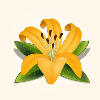 Beautiful vector illustration of yellow lily flower with green leaves on beige background - бесплатный vector #126299