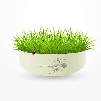 fresh green grass in vase on white background - vector gratuit #126749