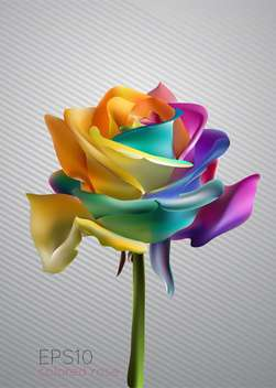 Vector illustration of beautiful colorful rose - Free vector #128959