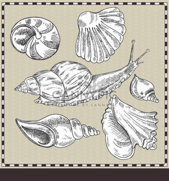 snail and shells in vintage style illustration - Free vector #135179