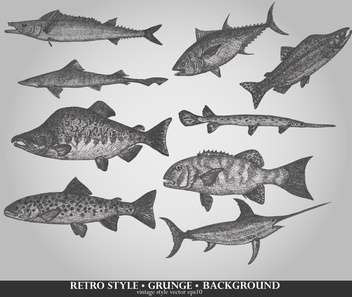set of sea fish in retro style vector illustration - Free vector #135209