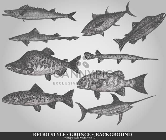 Satz von Seefisch im retro-Stil-Vektor-illustration - Kostenloses vector #135209