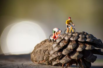 Miniature cyclists on pine cones - image gratuit(e) #136389
