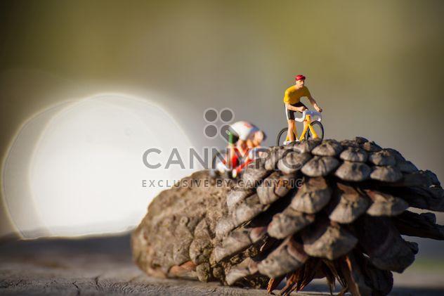 Ciclistas em miniatura com pinhas - Free image #136389
