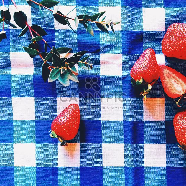 Fresh strawberries and twigs of green plant - Free image #136469