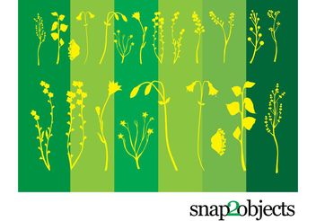 Flower Plants - vector gratuit #141739
