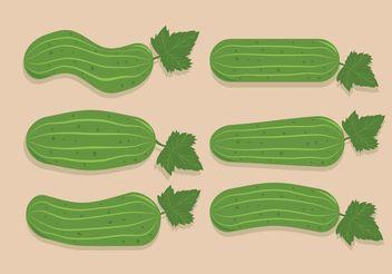 Cucumber Vectors - vector gratuit #145639