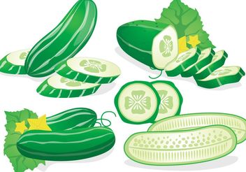 Fresh Cucumber Vector - бесплатный vector #146159