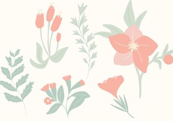 Hand Drawn Botanical Vectors - Free vector #146669