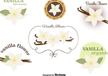 Vanilla Flower Vectors Set - Free vector #153009