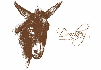 Free Hand Drawn Donkey Portrait Vector - бесплатный vector #156689