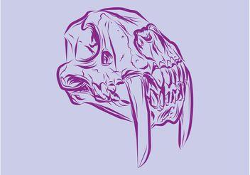 Animal Skull Vector - Free vector #156879