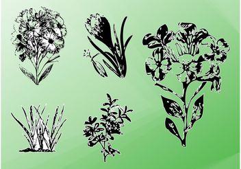 Vector Plants - бесплатный vector #157509