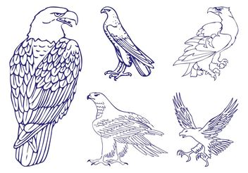 Eagle Graphics Set - Free vector #157769