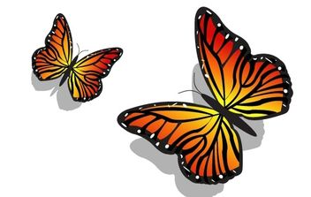 Pair of Butterflies - vector gratuit #169169