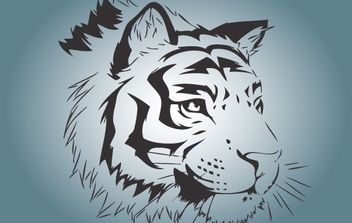 Bengal Tiger Face Vector - Free vector #174349