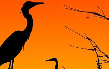Two Herons Resting - Free vector #179019