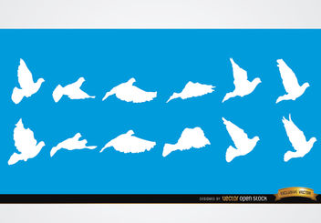 Dove flying sequence silhouettes - vector gratuit #181259
