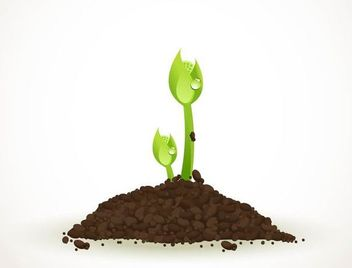 Realistic Green Sprouting Seeds - бесплатный vector #181909