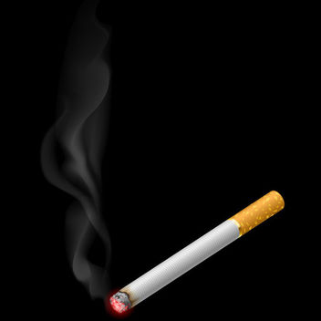 Realistic Burning Cigarette with Smokes - Free vector #182029