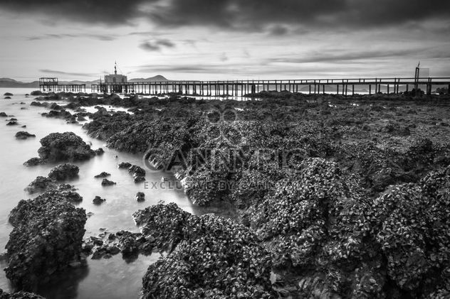 Long pier on sea shore - Free image #183409