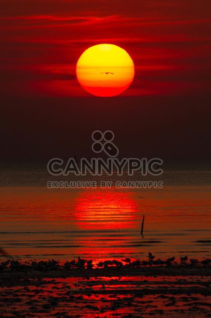 Coucher de soleil rouge - image gratuit(e) #183509