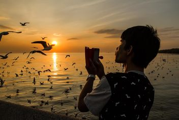 Taking seagulls at sunset - Free image #183919