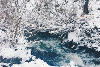 Frozen river in winter forest, Taiga - image #183989 gratis