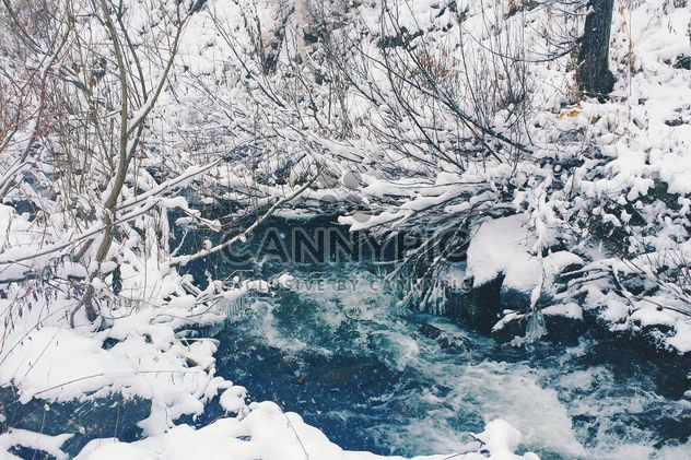 Frozen river in winter forest, Taiga - Free image #183989