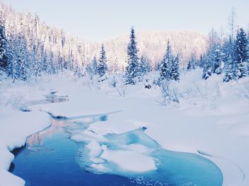 Winter landscape with river in forest - image #184009 gratis