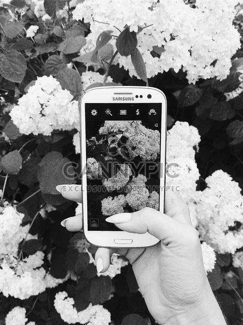 Photographie de smartphone - image gratuit(e) #184669