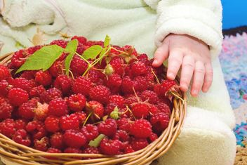 basket of raspberries - image #185889 gratis