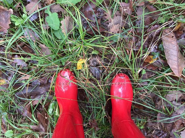 Red gumboots - Free image #185899