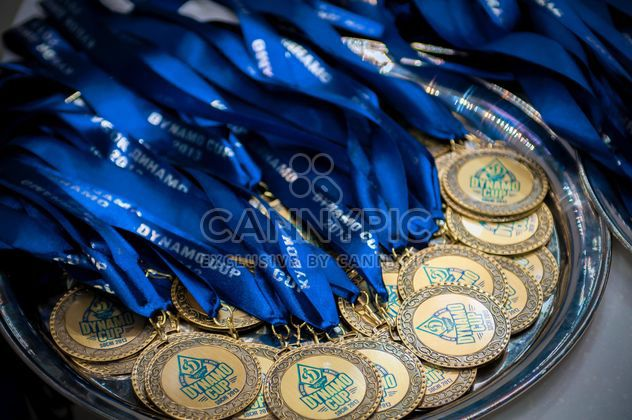 Dynamo cup medals - Free image #186059