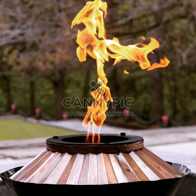 Detail of Eternal Flame - Free image #186199