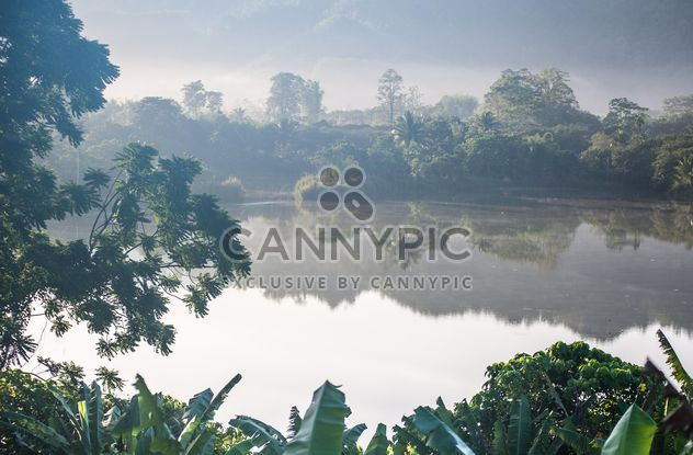 green trees reflected in water in the morning mist - Free image #186419