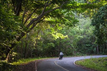 man hiding in the thick forests on the way to a motorbike - image #186449 gratis