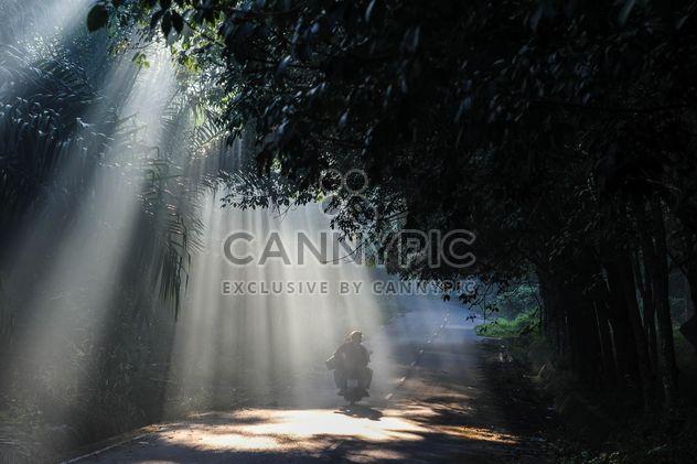 Personen auf einem Moped am Morgen - Free image #186479