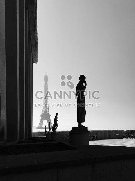 Скульптуры на площади Трокадеро, Эйфелева башня, Париж, Франция - Free image #186849