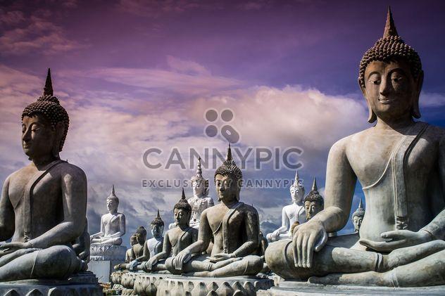 Buddha statues - Free image #197969