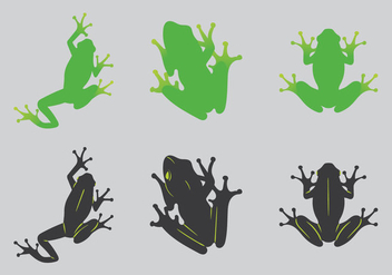Free Green Tree Frog Vector Illustration - Kostenloses vector #201339