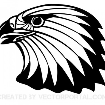 Free Vector Bald Eagle - бесплатный vector #202339