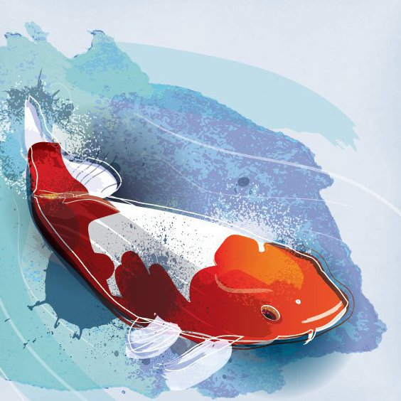 Koi Fish - Free vector #205799