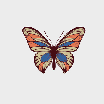 Free Vector Butterfly - Free vector #207549