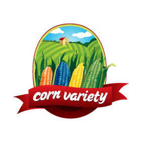 Corn Variety - vector #213419 gratis