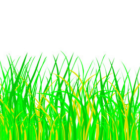 Green Grass - vector gratuit #221449