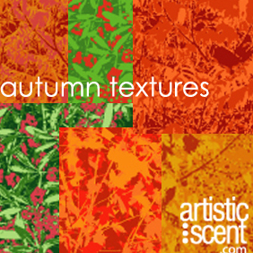 Autumn Textures - Free vector #222029