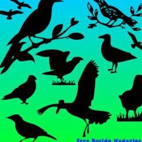 Bird Vectors - Free vector #223119