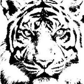 Tiger - vector gratuit #223809