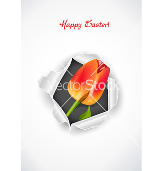 Free spring background vector - Free vector #224569